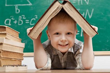 Das Institut Zur Fo(e)rderung Besonderer Begabungen Kümmert Sich Seit  Vielen Jahren Auch Um Kinder Mit Einer Dyskalkulie Oder Rechenschwäche Und  Führt Neben ...